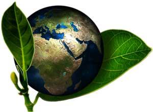 Die grüne Erde